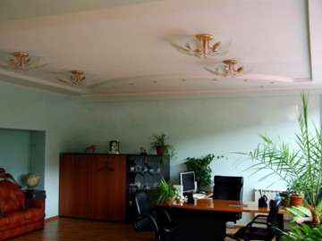ceilings-in-the-office-009
