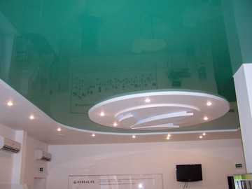 ceilings-in-the-office-017